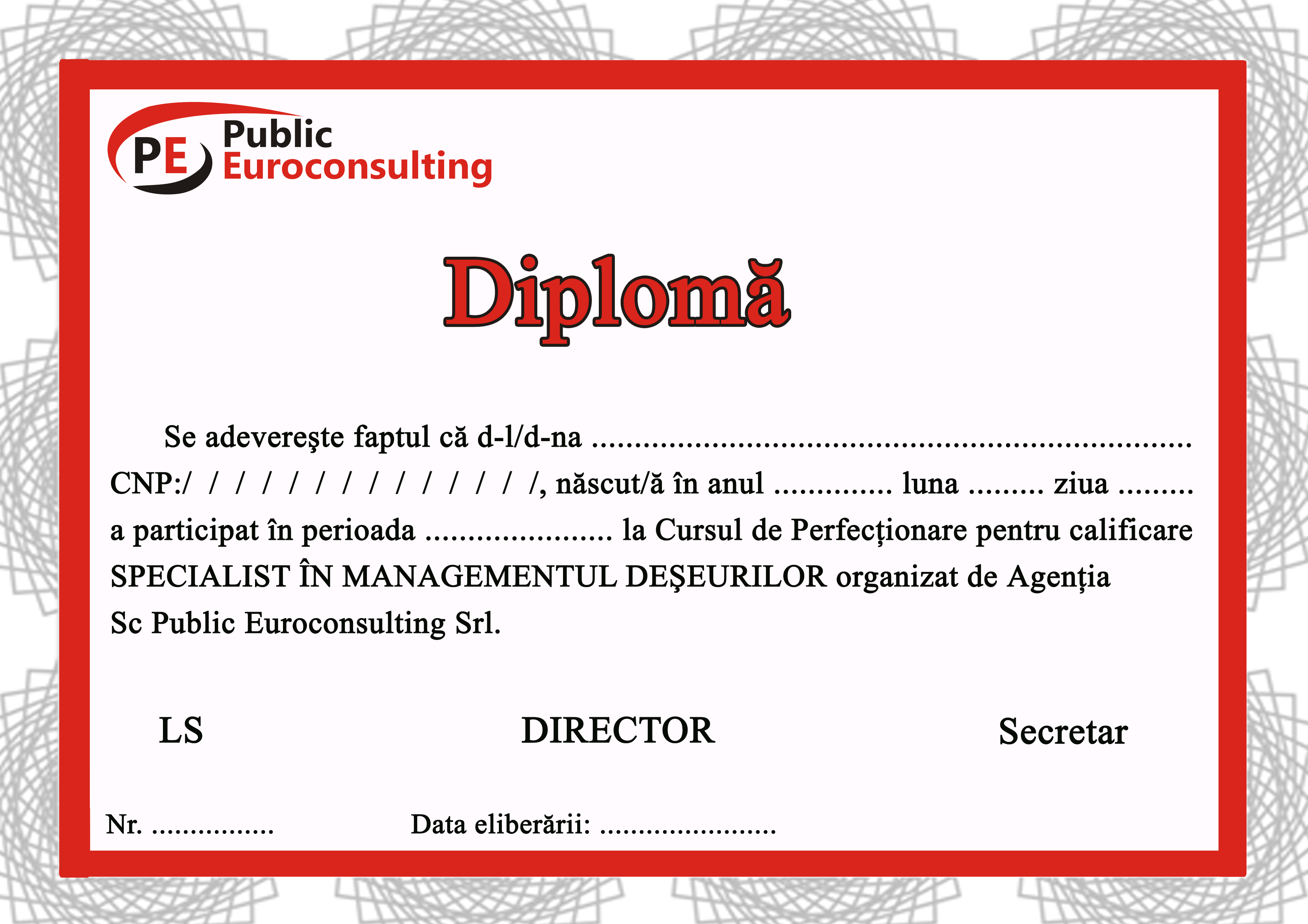Diploma Public Euroconsulting Curs SMD